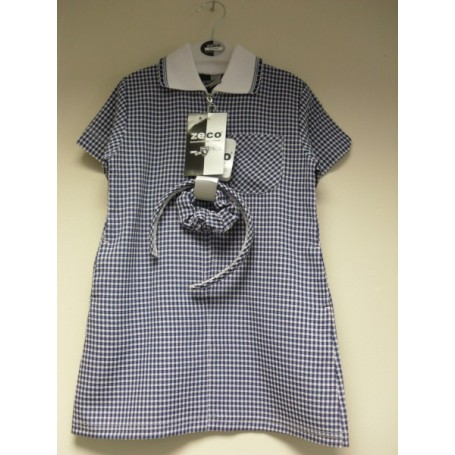 Blue A-Line Gingham Dress