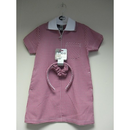 Red A- Line Gingham dress